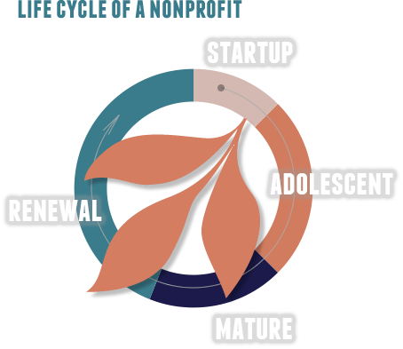 Nonprofit organizations have a defined life cycle, from the initial idea to growth and mature stability. At some point in that life cycle, a crisis may occur - loss of income, departure of key staff, industry changes – which may lead the organization to either review and renew or to dissolve. It is at those pivotal times when a nonprofit may reach out for help.